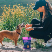 CBD Medications for Pets with Cancer