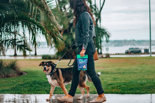 Post-Surgical Treatment with Pet CBD